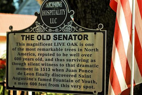 Old Senator