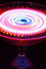 Cosmos (♥ Spice (^_^)) Tags: camera pink blue white color macro art glass beautiful japan digital canon dark geotagged photography eos lights photo amazing interesting asia flickr image bokeh wordpress creative picture illumination vivid blogger livejournal explore photographs photograph spinning 日本 5d portfolio vox 青 cosmos gettyimages facebook friendster multiply larawan 写真 白 canoneos5d twitter colorpicture creativeimages mywinners colorimages コスモス colorphotoaward キャノン イルミネーション ピンク アート ライト マクロ グラス ダーク デジタル イルミー フリッカ