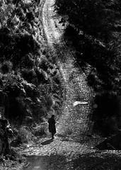 salire (studiolof) Tags: bw sicily campagne montagna strade sicilia madonie parcodellemadonie gratteri rosarioloforti fotoloforti