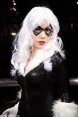 New York Comic Con 2009 - Black Cat Photoshoot (TheBigTog) Tags: blackcat costume cosplay spiderman convention comicbook cosplayer 2009 marvelcomics nycc newyorkcomiccon