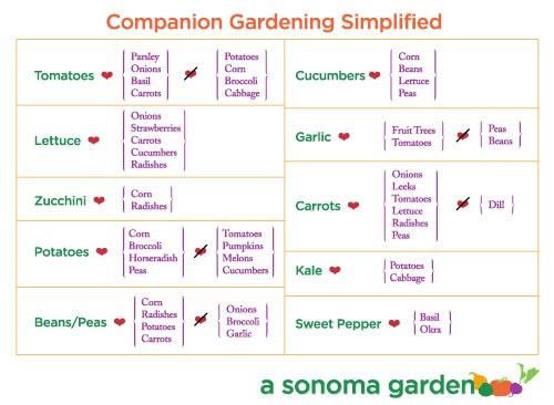 Genial A Sonoma Garden