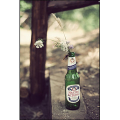 The beer and the bee (manlio_k) Tags: summer beer vintage bokeh ground bee ape birra