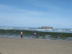 Beach Walkin'