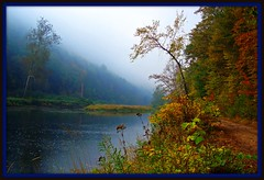 Foggy Autumn Morning at the Pinecreek! (pinecreekartist) Tags: fall rain fog pennsylvania pa wellsboro chiaramonte pennsylvaniagrandcanyon wellsboropa theworldisbeautiful natureislovely goldstaraward autumn2008 ilovemypics landscapesofvillagesandfields pinecreekartist tiogacountypachiaramonte