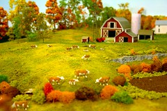 Forced perspective farm (slambo_42) Tags: railroad scale model n trains ho forcedperspective