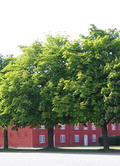 Kastellet 6 (biedk) Tags: house tree copenhagen denmark tr danmark hus kbenhavn kastellet