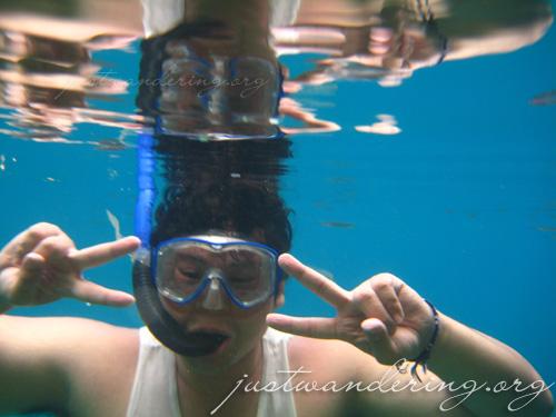 Coron, Palawan - underwater pictures