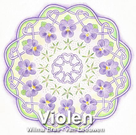 Violen