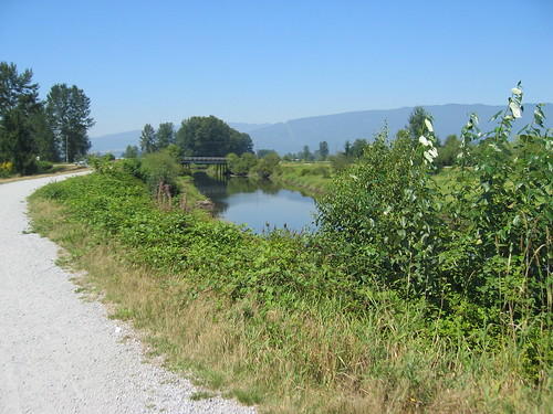 Pitt River Dyke Trail