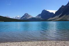 Bow Lake and Crowfoot Glacier (ycatbus) Tags: lake canada rockies alberta rockymountains banffnationalpark bowlake icefieldparkway crowfootglacier