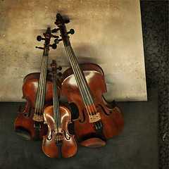 Three (pixel_unikat) Tags: music stilllife texture square violin musicalinstrument stringinstrument 500x500 supershot aplusphoto