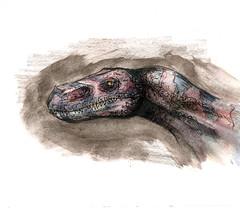 Dino (Jugo de Naranjo) Tags: china dino acuarela tinta dinosaurio