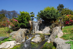 Waterfall in the Japanese Gardens