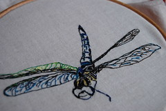 dragonfly, in progress (Studio SOIL) Tags: insect needlework dragonfly workinprogress stitchery