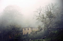 just like a dream (Alieh) Tags: house tree home rain fog persian iran bank persia iranian hillside  masule  northofiran    masooleh   masoule aliehs alieh      upcoming:event=1174787