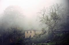 just like a dream (Alieh) Tags: house tree home rain fog persian iran bank persia iranian hillside  masule  northofiran    masooleh   masoule aliehs alieh      upcoming:event=1174787