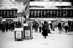 (giuli@) Tags: uk england blackandwhite bw london film station analog geotagged 50mm lenstagged travellers newspapers victoria passengers railwaystation papers neopan neopan1600 stazione londra zuiko iso1600 inghilterra olympusom10 victoriatrainstation cherieblair fujineopan1600 giornali blackandwhitefilm passeggeri fujineopan londonvictoria viaggiatori zuiko50mmf18 giuliarossaphoto bncitt noawardsplease group:smellsfunny=no bnviaggio nolargebannersplease geo:lat=51495225 geo:lon=0144335
