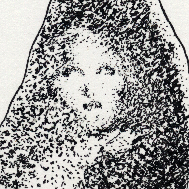 Virgin Mary In Grilled Cheese Apparition Simulacrum_detail