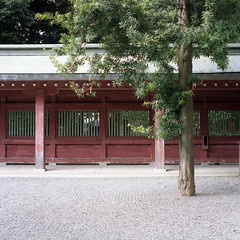 scape (Teppei Takahashi) Tags: wood red 120 film japan shrine space bronica squareformat scape sq graden meduimformat