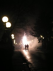 Fire Works - Vuurwerk (Marianne de Wit) Tags: fireworks newyear vuurwerk nationalparkdehogeveluwe endofftheyear