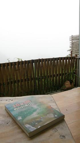 10.在陽台上看書是享受一件