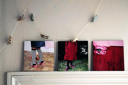 'photos
