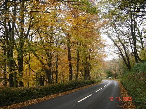 Glens Of Antrim. autumn about the Glens of Antrim 125