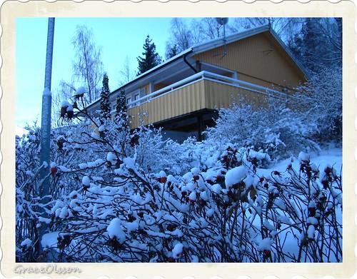Jag och snö i Västerås
