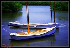 Spanish Point Florida (davalli) Tags: florida anawesomeshot guasdivinas dragondaggerphoto artofimages bestcaptureaoi platinumbestshot abouttheclassact
