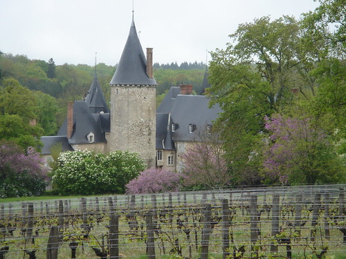 Loire Valley winery