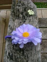 Mauve ponyholder (Pretty Treasures for gorgeous girls) Tags: handmade etsy madeit helen21 dwanda etsydust