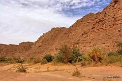 Oued Djerat (Tassili n'Ajjer) - Canyon IV (L'Abominable Homme de Rires) Tags: sahara rock algeria sand sable oasis algrie touareg roche dsert oued djanet tassilinajjer illizi djerat