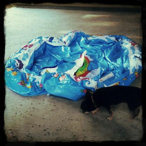 sad, deflated pool