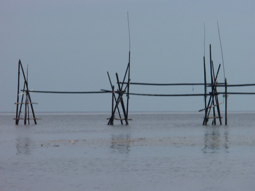 Fishing traps near Bako