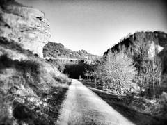 (DRGfoto) Tags: parquenaturaldeizki flickrandroidapp:filter=none