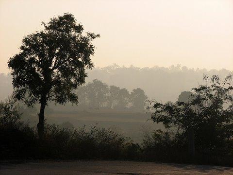 landscape without vehicles