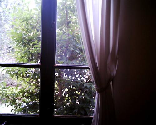 【写真】VQ1005で撮影した小出邸の窓