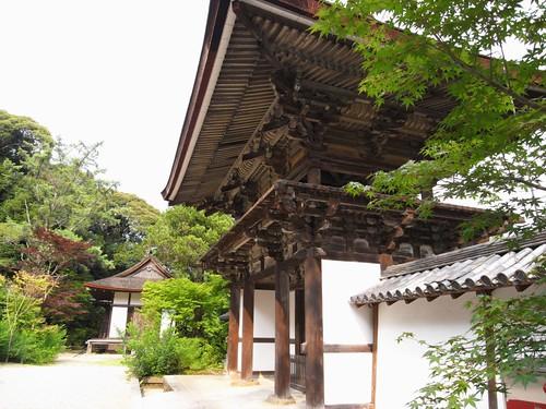円成寺-09