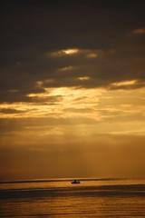 UN BARQUITO DE CASCARA DE NUEZ (javierespadas) Tags: amanecer pesca gijon lacalzada playadelarbeyal