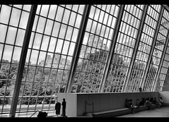 New York from Egypt (DP Photography) Tags: blackandwhite bw newyork museum manhattan egypt metropolitanmuseumofart templeofdendur glassfacade debashispradhan dpphotography dp photography