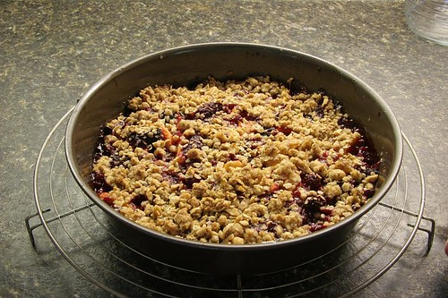 Nectarine Berry Crisp | Travels with George and Marta