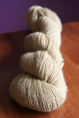 unknown merino