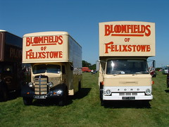 Bedford O series and Ford D Series Removals lorries (classic vehicles) Tags: old classic truck bedford o lorry commercial vehicle series removals forddseriesremovalslorry bedfordoserries bedfordoseriesremovalslorry vintagebedfordoseries vintagecommercialvehicle vintageremovalslorry vintageremovalstruck forddseriesforddseriesclassicoldclassicforddseriesremovalslorry