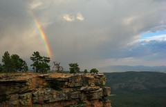 Under the Rainbow (zoniedude1) Tags: arizona sky cliff southwest nature weather clouds skyscape landscape rainbow view edge mogollonrim therim escarpment coloradoplateau golddragon azmonsoon mywinners anawesomeshot canonpowershota710is apachesitgreavesnationalforest citrit elitephotography goldstaraward worldwidelandscapes natureselegantshots multimegashot absolutelystunningscapes gr8photo damniwishidtakenthat zoniedude1 flickrsraimbowpics panoramafotogrfico itspronouncedmuggyown