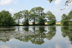 lake at Wedgwood Staffordshire (lucy&toby) Tags: trees lake reflection water canon 350d canon350d staffordshire wedgwood 2007 naturesfinest stokeandstaffordshire