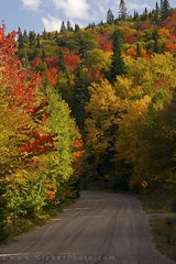 Fall Colours along Highway 2 through Parc national du Mont Tremblant, Quebec Canada (Rolf Hicker Photography) Tags: world road travel canada fall nature outdoors landscapes quebec scenic roads provincialpark monttremblant laurentides naturephotography roadpictures travelphotography fallpictures 5photosaday easterncanada provincialparks rolfhicker parcnationaldumonttremblant honeymooncanada parcsquebec hickerphotocom