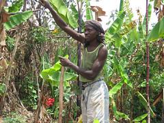 Farmer in Rulindo, Rwanda