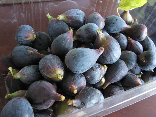 FIg Picking