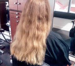 First trim