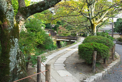 The Philosopher's Walk in Kyoto